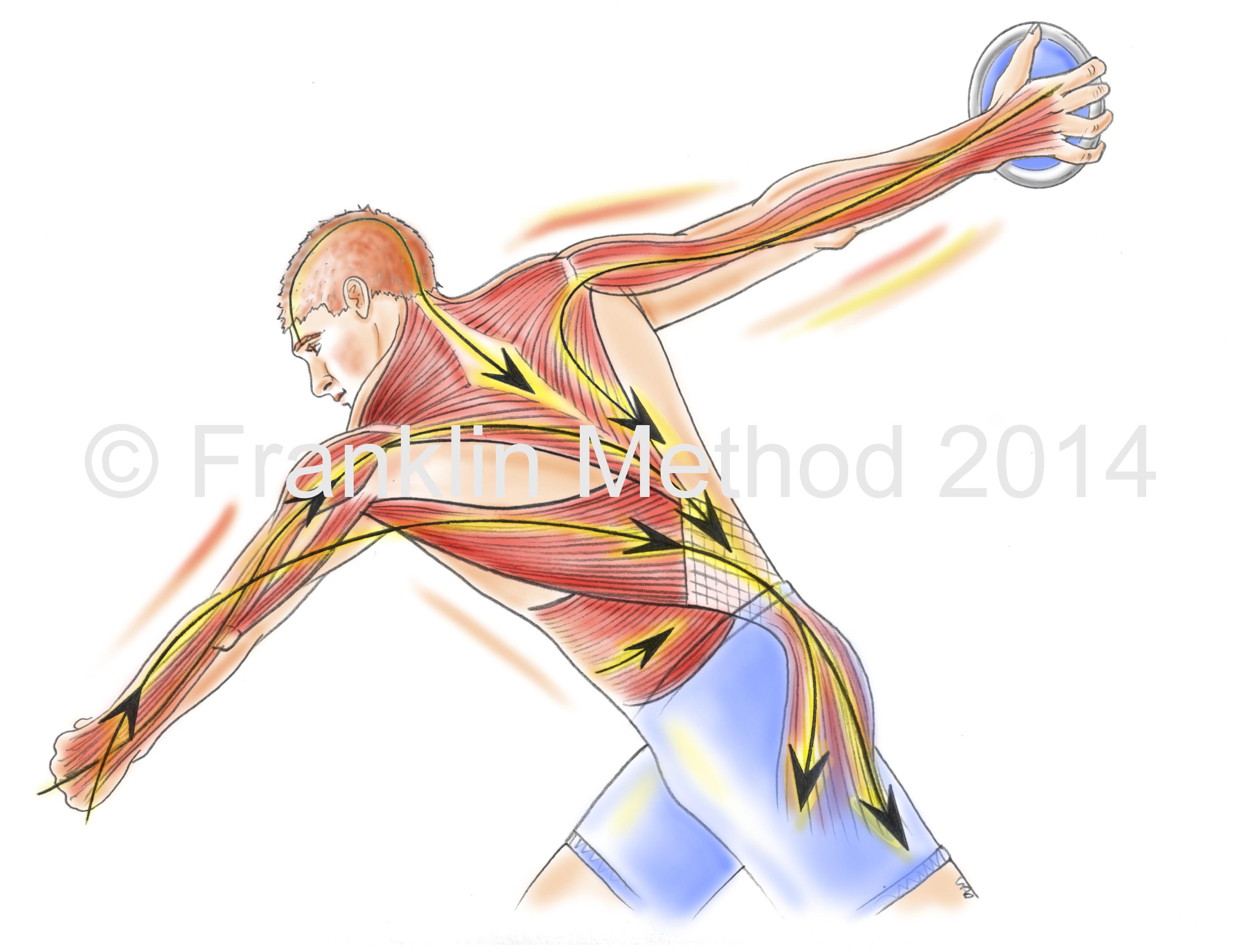 Neue Faszien Übungen für Rücken und Knie mit der Franklin-Methode ...
