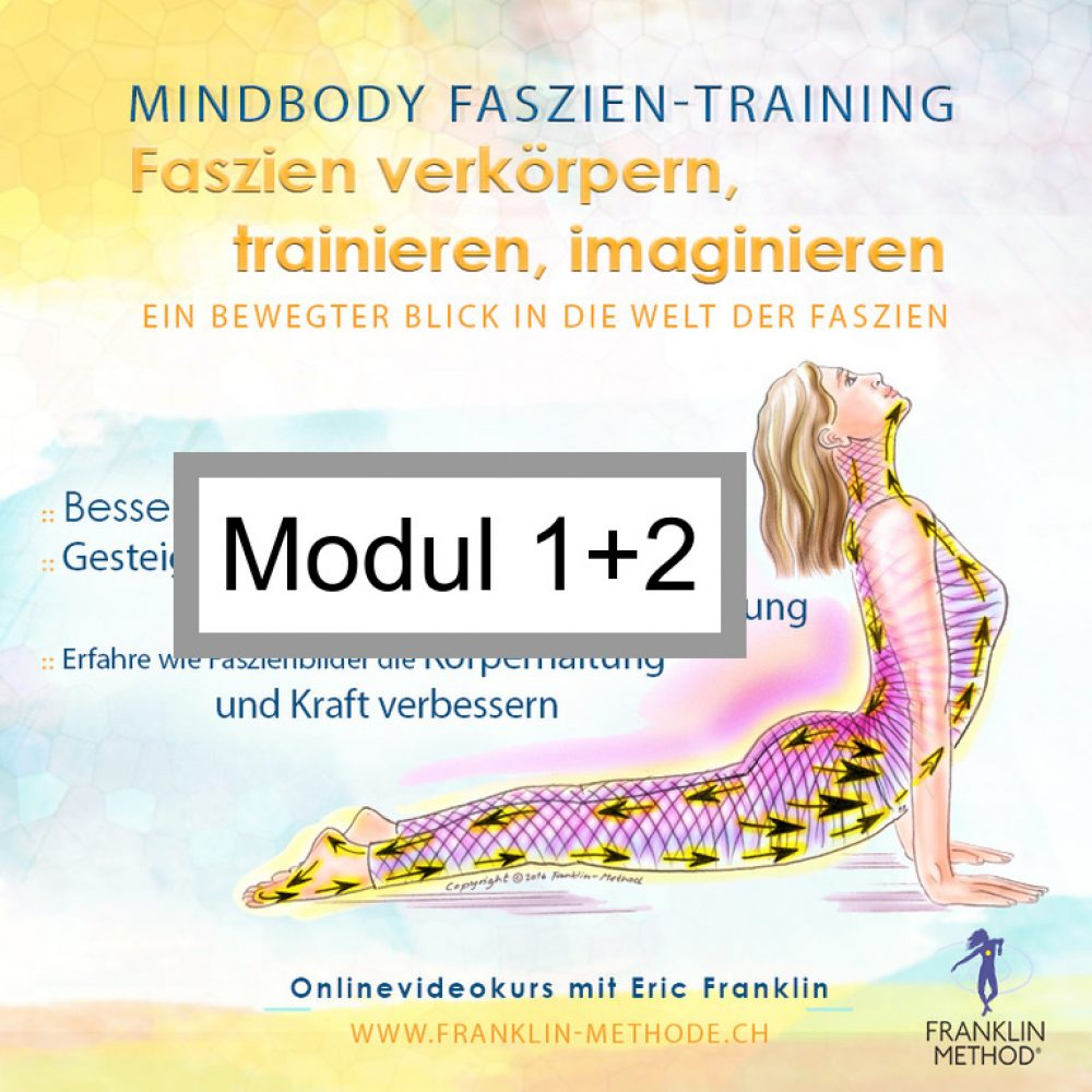fascia_mod12
