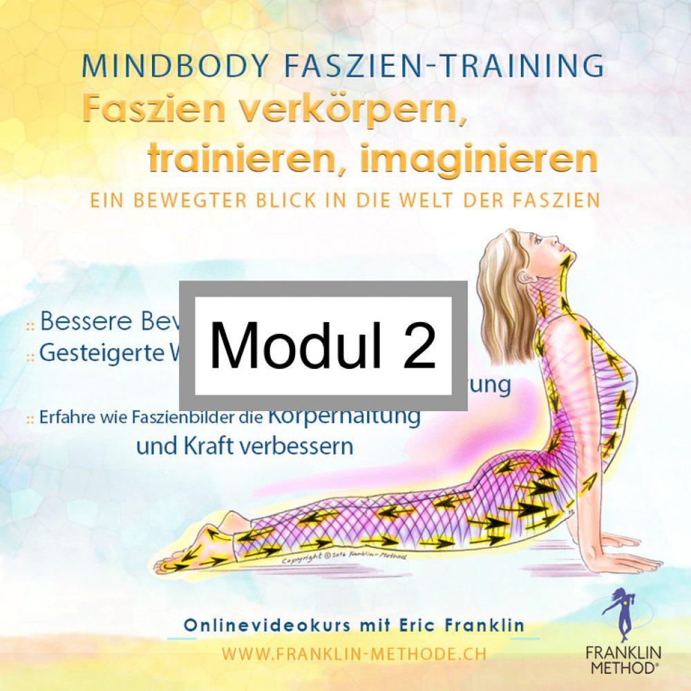 fascia_mod2